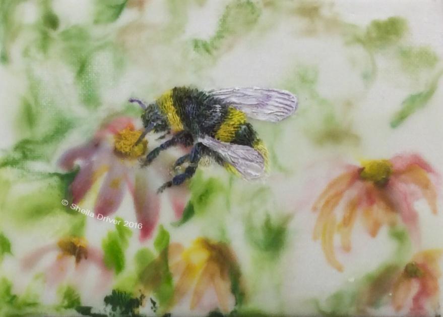 "Day 9: ""Bumblebee"""