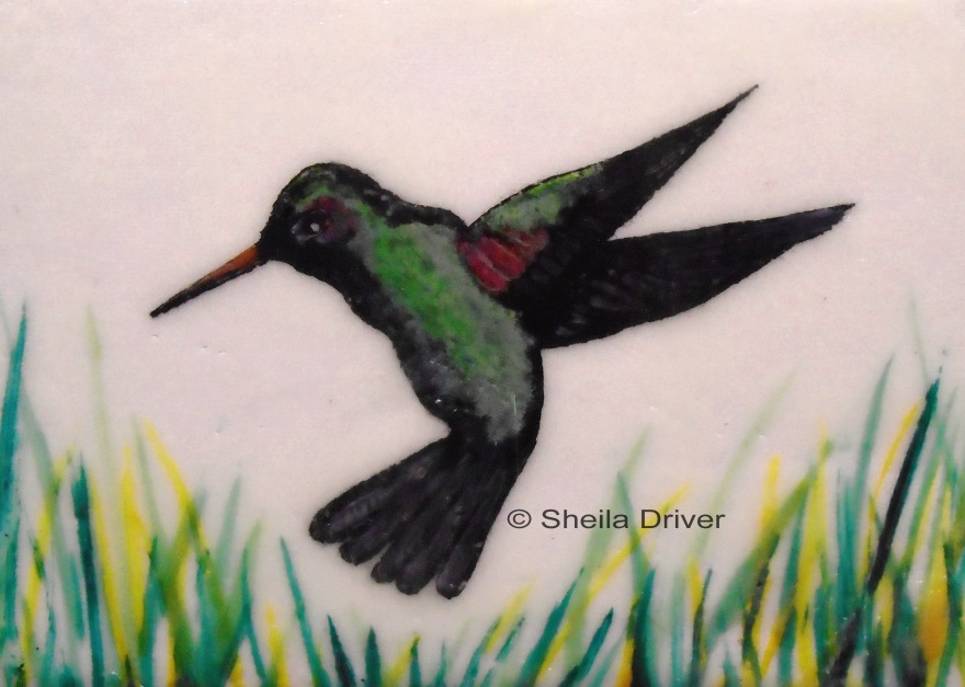 "Day 21: ""Humming Bird"""