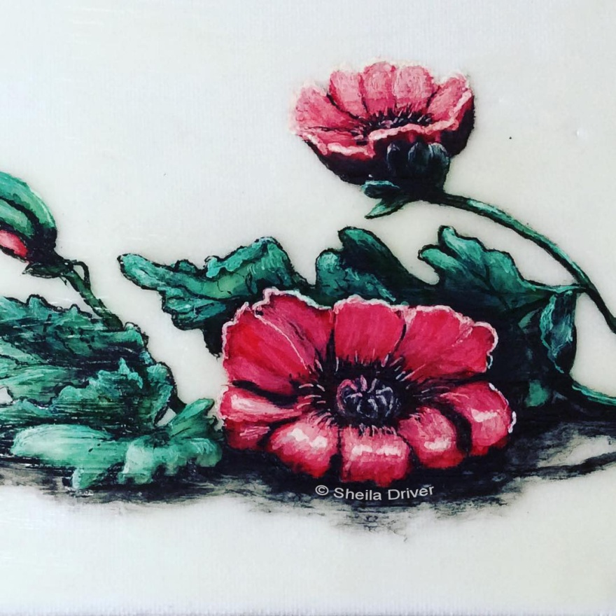 """Day 30: """"Poppies"""""""